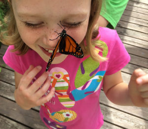 Anneke and Monarch butterfly release day, June 2015